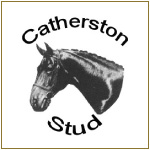 Sarah Sjoholm-Patience Team with Catherton Stud